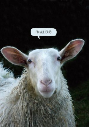 A greeting card for a friend, featuring a sheep facing front with a speech bubble that says 'I'm all ears.'