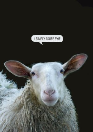 sheep with text 'I adore ewe'