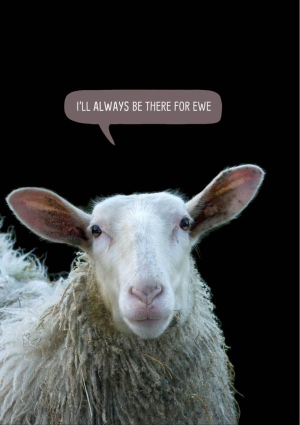 Sheep with text 'I'll always be there for ewe'