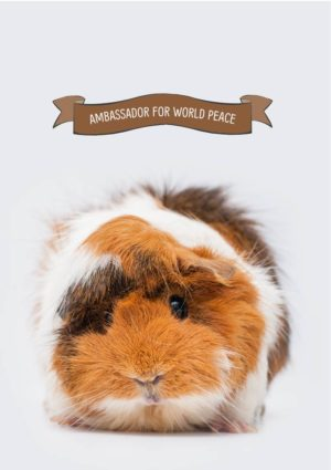 Guinea pig and banner that reads 'Ambassador for World Peace'
