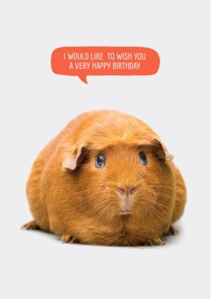 Wishes greeting card featuring a guinea pig with speech bubble and text 'I would like to wish you a very happy birthday.'
