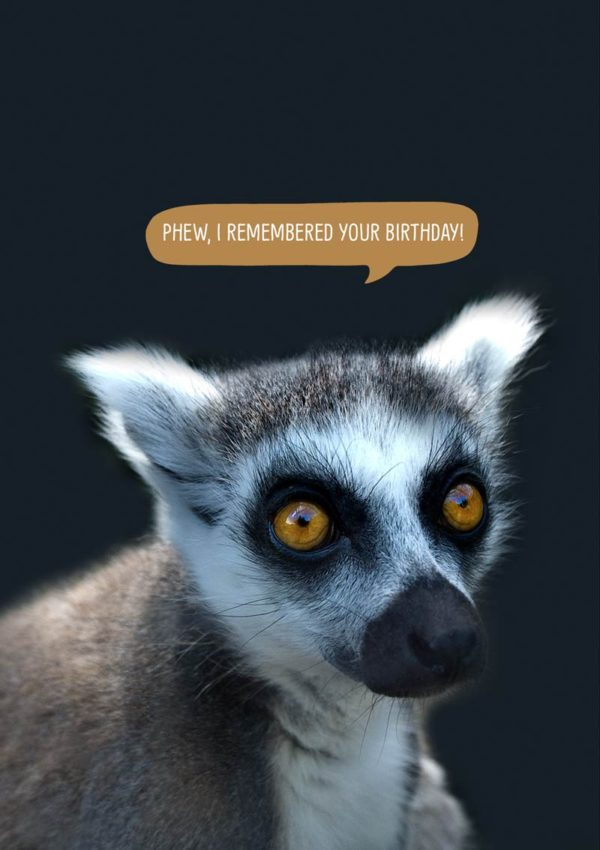 Lemur with speech bubble and text 'Phew, I remembered your birthday.'