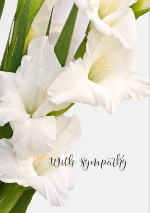 White gladioli with text 'With Sympathy'