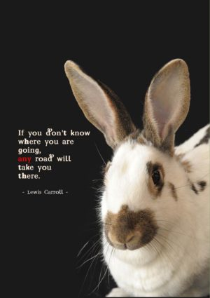 a rabbit and a quote from Alice in Wonderland by Lewis Carroll that 'If you don't know where you are going, any road will take you there.'