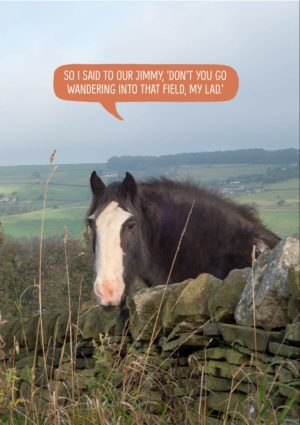 a speech bubble with a horse leaning over a wall and saying 'So I said to our Jimmy, 'Don't you go wandering into that field, my lad.'