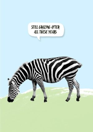 A zebra grazing, and a speech bubble with the text 'Still Grazing After All These Years'