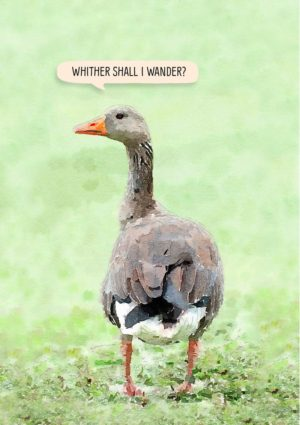 A greylag goose and text 'Whither shall I wander?'