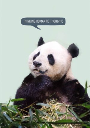 a giant panda sitting among bamboo leaves and thinking wonderful romantic thoughts.