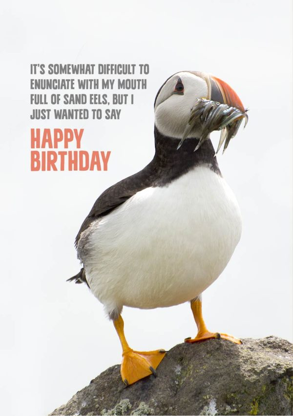 a Birthday card featuring a puffin standing on a rocky outcrop. It has a mouth full of sand eels, and being a polite bird is is saying 'It's somewhat difficult to enunciate with my mouth full of sand eels, but I just wanted to say Happy Birthday'