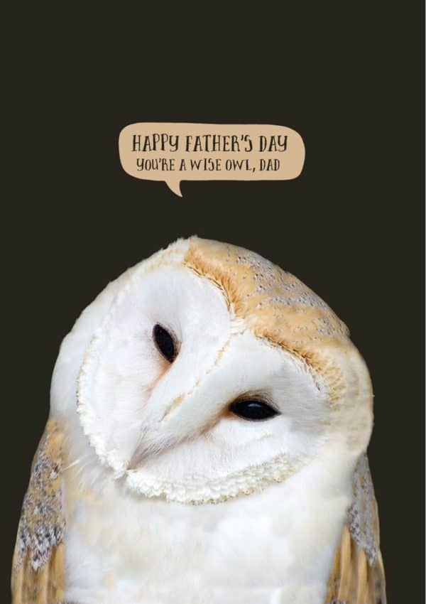 A barn owl with speech bubble and text 'Happy Father's Day - You're A Wise Owl, Dad'