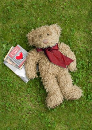Teddy Bear lying on its back on the grass staring up at the sky with books near it including one entitled 'A Bear In Love'