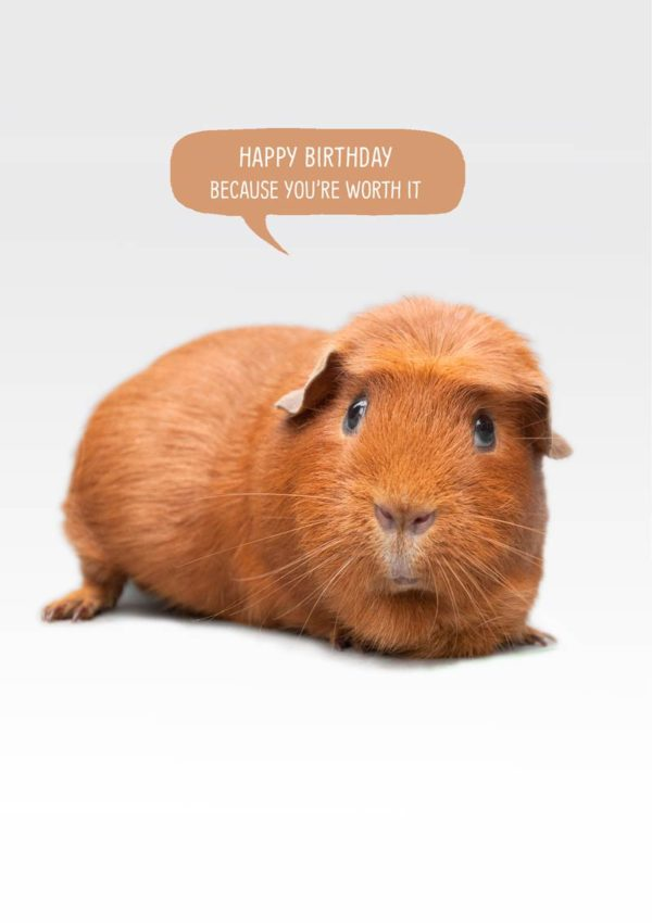 Worth It Greeting card with a crested guinea Pig with speech bubble and text, Happy Birthday, because you're worth it'