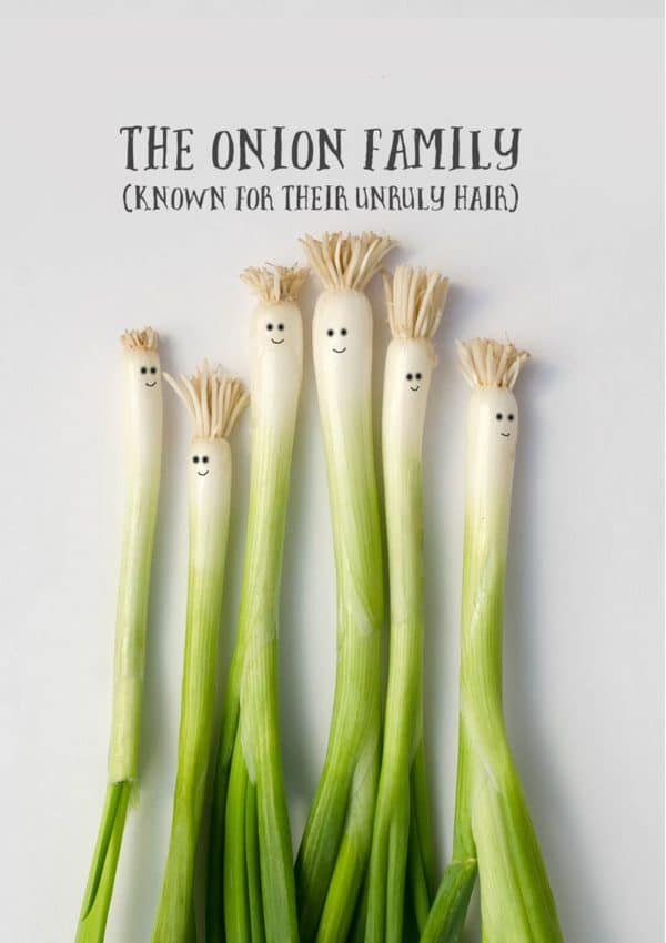 a family of spring onions and text 'The Onion Family - Known For Their Unruly Hair'