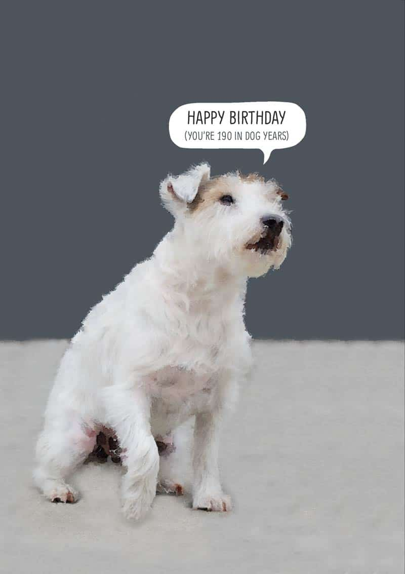 Dog With Text Happy Birthday Youre 190 In
