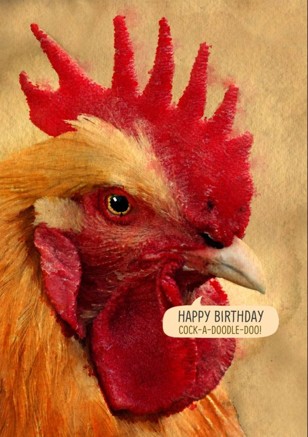 Doodle do said by a cockerel and text 'Happy Birthday - Cock A Doodle Doo'