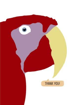 A red macaw saying thank you