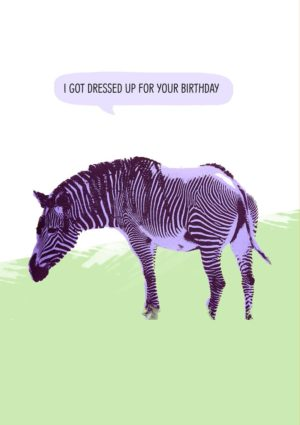 A zebra with purple stripes on its head, front legs, and the front part of its chest. The text reads 'Happy Birthday - I Got Dressed Up For The Occasion'