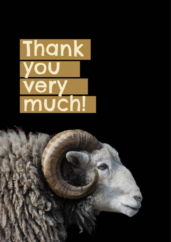 A Thank You card featuring a Herdwick ram with curly horns, and text 'Thank You Very Much'