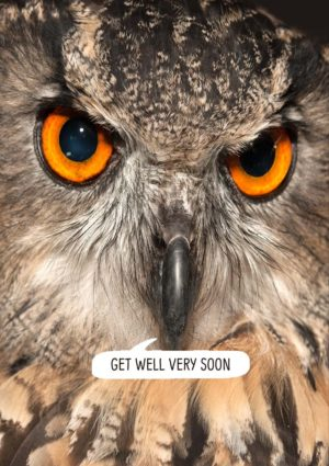 A stern owl and text 'Get Well Very Soon'