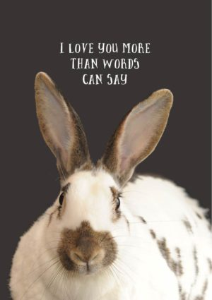 A sitting rabbit in profile, and text 'I Love You More Than Words Can Say'