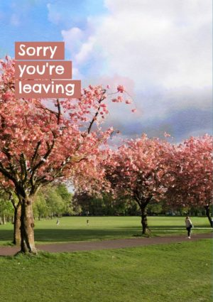 An avenue of cherry trees in blossom and a person walking along the footpath and moving out of the frame, and text 'Sorry You're Leaving'