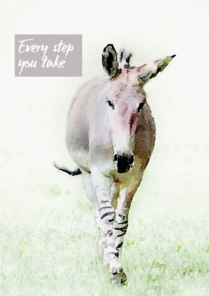 A greeting card featuring an Abyssinian Wild Ass walking towards the viewer, and text 'Every Step You Take'