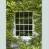 A window framed by wisteria and a quotation from Ella Wheeler Wilcox 'Let There Be Many Windows To Your Soul'