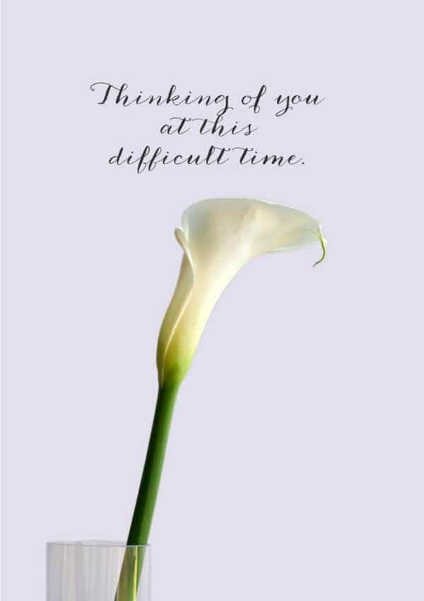 A sympathy or bereavement card with a white Calla Lily in a glass vase and text 'Thinking Of You At This Difficult Time'