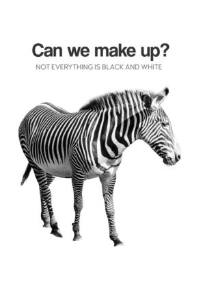 A zebra in black and white and text 'Can We Make Up?' and 'Not Everything Is Black And White'