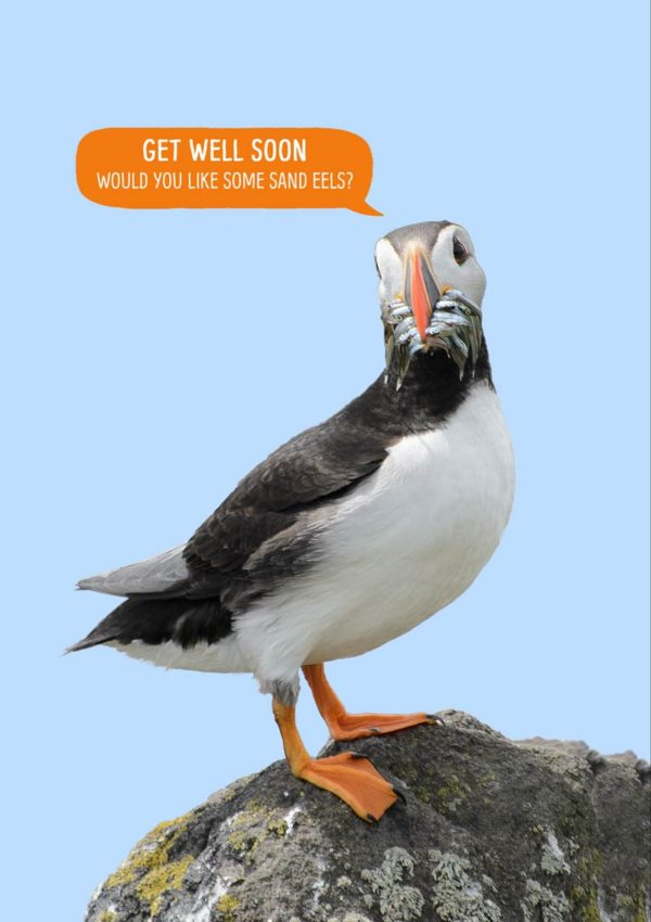 a puffin standing on a rock with a beak full of sand eels and a speech bubble with text 'Get Well Soon - Would You Like Some Sand Eels?'