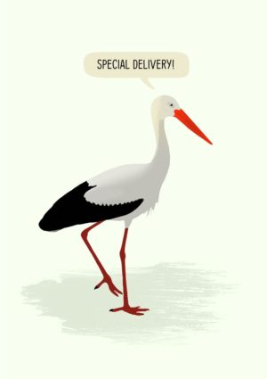 Arrival: a stork standing on one leg with the other raised, and a speech bubble and text 'Special Delivery'