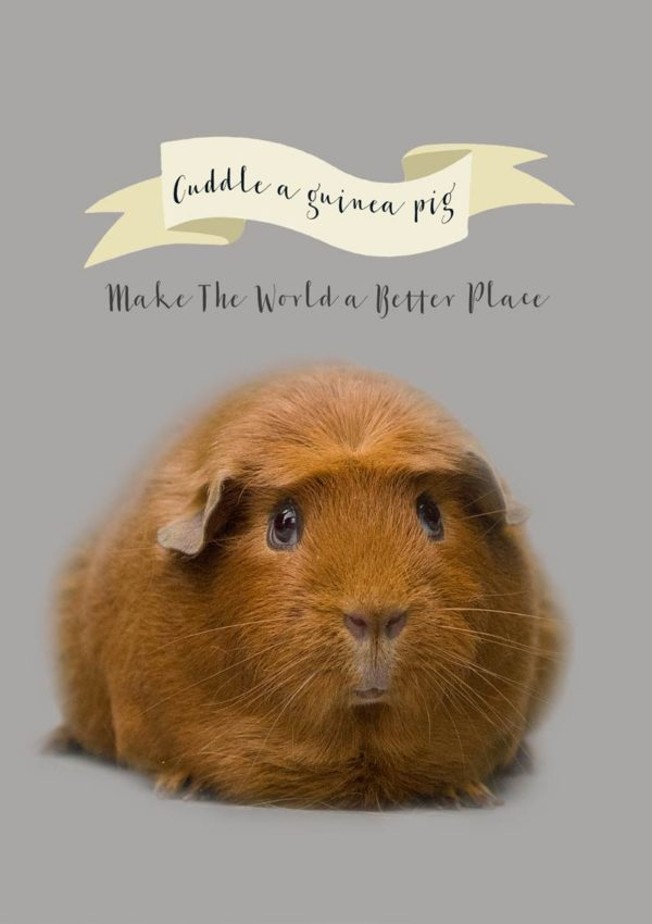 Cuddle Greeting Card with a guinea pig and a banner with text 'Cuddle A Guinea Pig' and 'Make The World A Better Place'