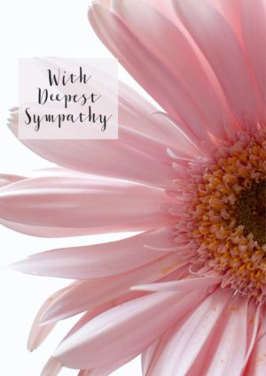 A close up of a gerbera with pale pink petals and text 'With Deepest Sympathy'