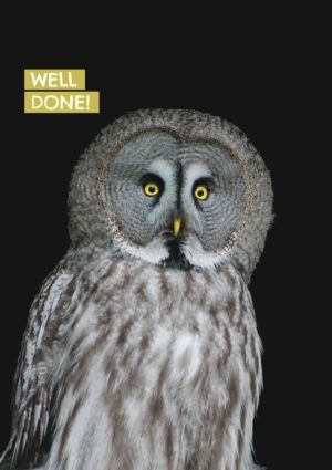 Large owl with surprised expression, and text 'Well Done'