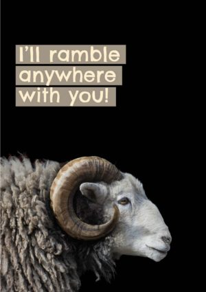 A ram with magnificent horns and shaggy coat seen in profile and text 'I'll ramble anywhere with you'