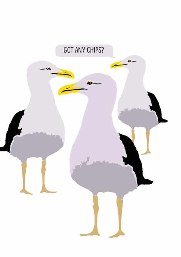 Three gulls standing with a speech bubble and text 'Got Any Chips?'
