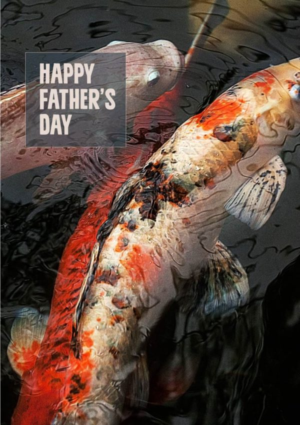 Two koi carp swimming with their fins barely breaking the surface of the water, and a text box with text 'Happy Father's Day'