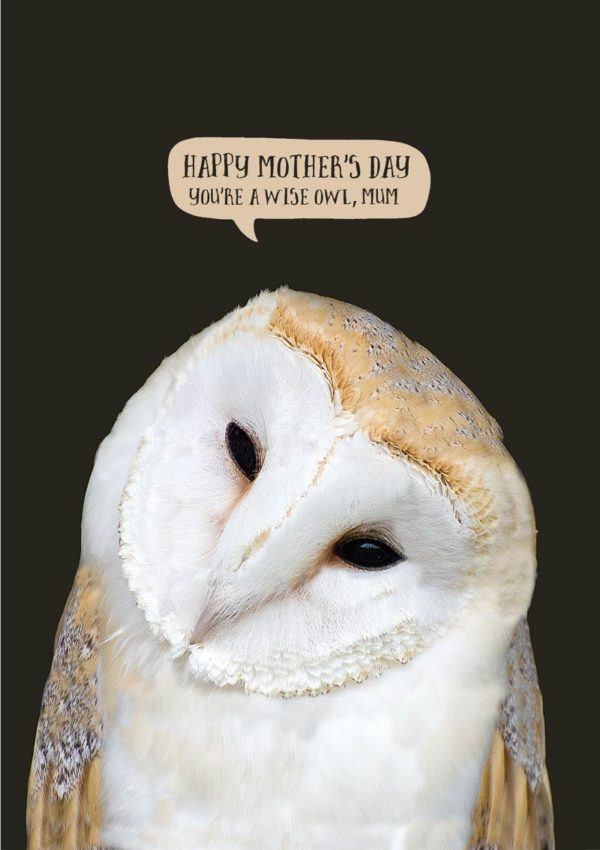 A beautiful barn owl with its head tipped to one side, and text 'Happy Mother's Day - You're A Wise Owl, Mum' - Wise Mum