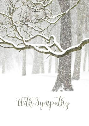 A quiet landscape after a recent snowfall, with snow-laden branches and snow on the ground and text 'With Sympathy'.