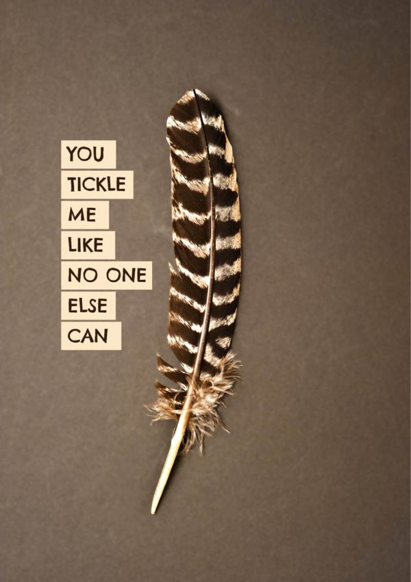 A brown and white striped feather against a brown background with text picked out against a pale cream background 'You Tickle Me Like No One Else Can'