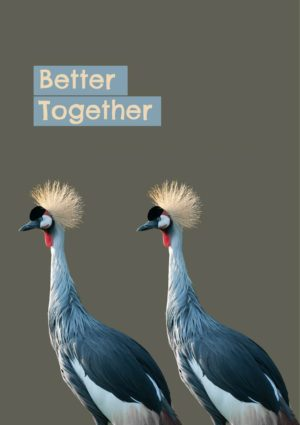 Two Crowned cranes in profile facing the same way and set against against a pale brown plain background - and text 'Better Together'