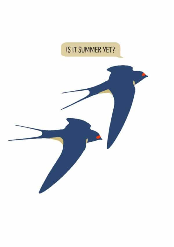 Humorous Summer Greeting Card featuring two swallows flying close to one another and a speech bubble with one of the swallows saying 'Is It Summer Yet?'