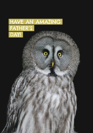 A large grey Father Owl with an amazed or startled expression and text 'Have An Amazing Father's Day'
