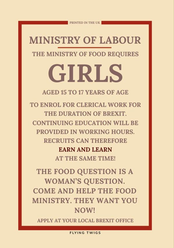 'Clerks' Anti-Brexit Greeting Card featuring a mockup of a World War II Ministry Of Information poster about clerical work for 'girls'.