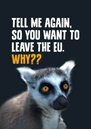 'Lemur' Anti-Brexit Greeting Card to support the No Brexit, anti-Brexit movement, featuring a wide-eyed lemur saying 'Tell me again, so you want to leave the EU. Why??'