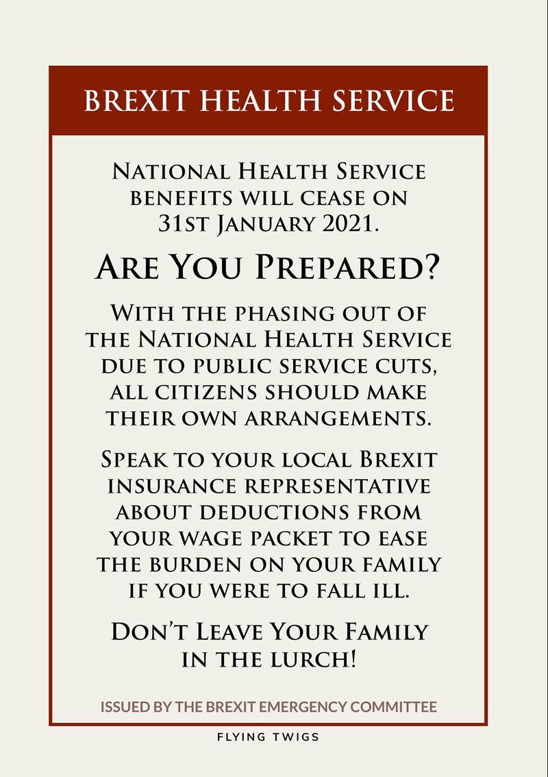 Health Anti Brexit Greeting Card Flying Twigs