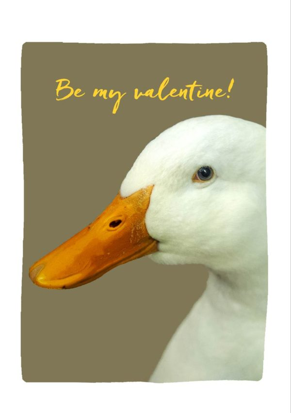 Yellow Beak Valentine's Day Card with a white duck and the words 'Be my valentine!'